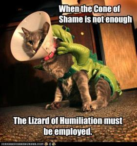 lizard of humiliation